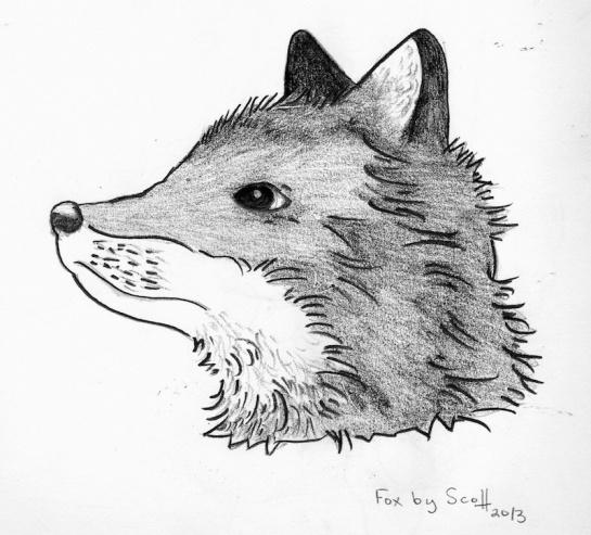 Foxhead sdf 2013